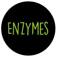 DNA_Supplements-Enzymes